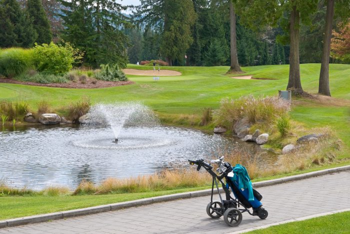 Golf trolley in front of fountain